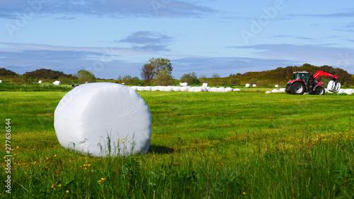 Fotografía Bale of hay wrapped in plastic foil, Norway