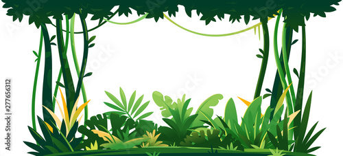 Poster Affiche vintage Wild jungle forest with trees, bushes and lianas on white background, decorative composition of jungle plants on one side, dense vegetation of the jungle, topical forest plants