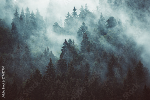 Foto auf AluDibond Rosa dunkel Misty mountain landscape
