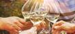 Leinwandbild Motiv Family of different ages people cheerfully celebrate outdoors with glasses of white wine, proclaim toast