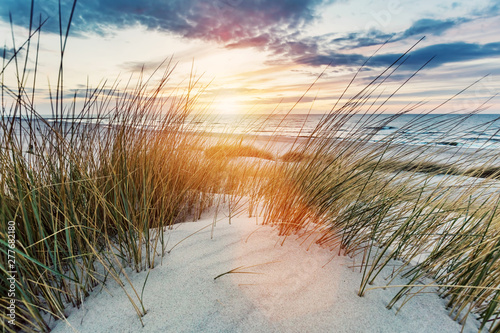 Poster Zee zonsondergang Grassy dunes and the Baltic sea at sunset