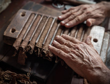 Cigar Rolling Or Making By Torcedor In Cuba