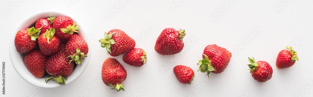 Fototapety, obrazy: panoramic shot of fresh and ripe strawberries on white bowl