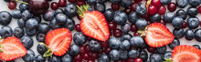 Panoramic Shot Of Red, Fresh And Ripe Cranberries, Cut Strawberries And Whole Blueberries