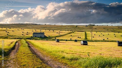 Fotografía  Black Plastic Hay Bales in field, in early summer harvesting in Baldersdale, Nor