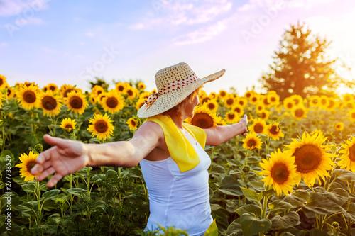 Fotografia  Senior woman walking in blooming sunflower field feeling free and admiring view