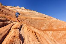 Zion National Park, Utah, USA:...
