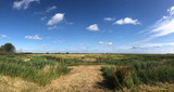 Scenery around Offingawier