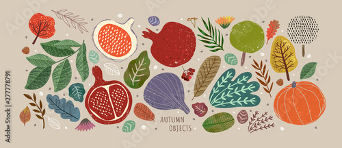 Vector illustrations of autumn objects: fruits and vegetables, harvest, trees, leaves, plants, pumpkin, pomegranates, figs and nuts. Cute freehand drawings to create a poster or card. - 277778791