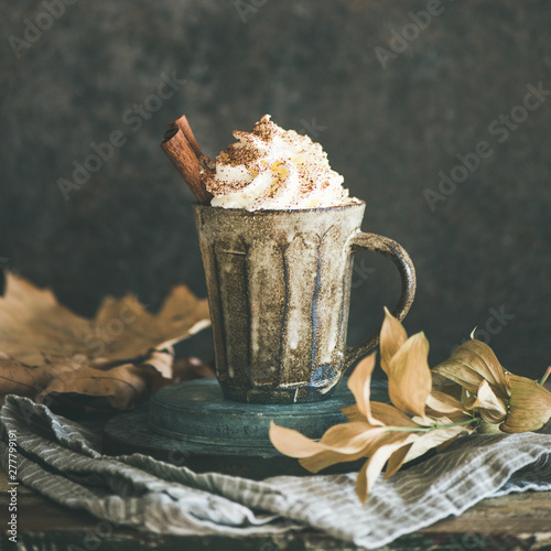 Foto auf Gartenposter Schokolade Autumn or Winter hot chocolate or coffee with whipped cream and cinnamon in rustic mug, dark background behind, copy space, square crop. Fall warming sweet drink