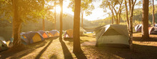 Tents In Pine Parks