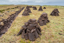 The Peat Bogs Of Ireland Are A...