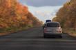road in autumnal landscape
