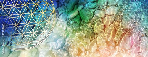 Banner Blume des Lebens im Fluss farbiger Lichtwellen in kristallklarem Wasser Wallpaper Mural