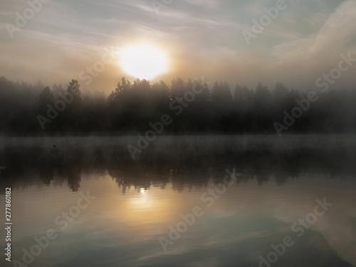Vászonkép Foggy and mystical lake landscape before sunrise