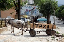 Rural Traditional Horse Taxi B...