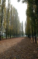 Park in Malesnica residential area, Zagreb, Croatia