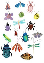 Set Of Insects Watercolor Illu...