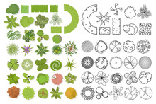 Trees Top View. Different Trees, Plants Vector Set For Architectural Or Landscape Design. Set Of Linear And Color Flat  Illustration
