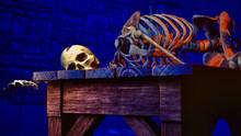 Human Skeleton In Medieval Dun...