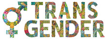 Word TRANSGENDER With Transgender Symbol. Vector Illustration