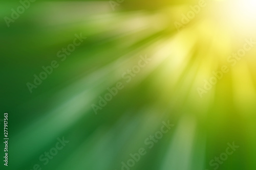 Abstract bokeh background from the tree in the garden - 277917563