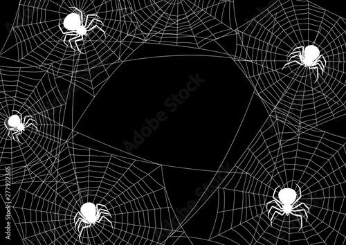 Fototapety, obrazy: Background with black widow spiders.