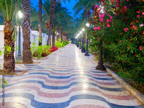 Beautiful alley with palm trees - Explanada de Espana. Alicante. Spain