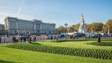 Fototapeta London - Buckingham Palace - Panorama
