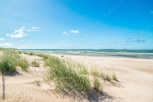 Beautiful sandy beach Yyteri at summer, in Pori, Finland Poster Mural XXL