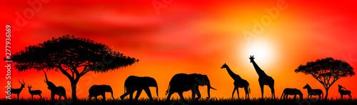 Cuadros en Lienzo Savanna animals on a background of a sunset sun