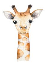 A Poster With A Baby Giraffe. Watercolor Cartoon Giraffetropical Animal Illustration. Jungle Exotic Summer Print.