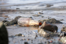 A Forlorn Brown Bottle Washed Up On The Shore