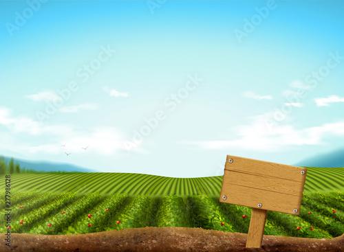 Canvastavla Green field background