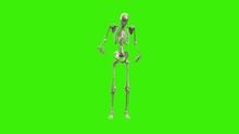 3D Skeleton Michael Jackson Da...