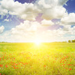 Leinwandbild Motiv Green field and sunrise on blue sky.
