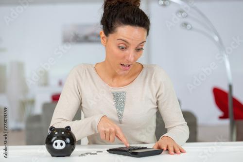 Fényképezés portrait of woman using a calculator