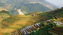 Terraced Fields In Mu Cang Cha...