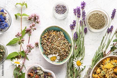 Various kinds of herbal tea Canvas Print
