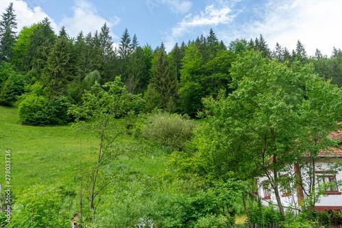 View from Piatra Craiului mountains,  Romania © Oana