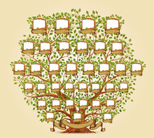 Family Tree Template Vector Il...