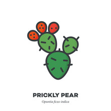 Prickly Pear Fruit Icon, Filled Outline Style Vector