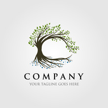 Tree Logo Illustration Design