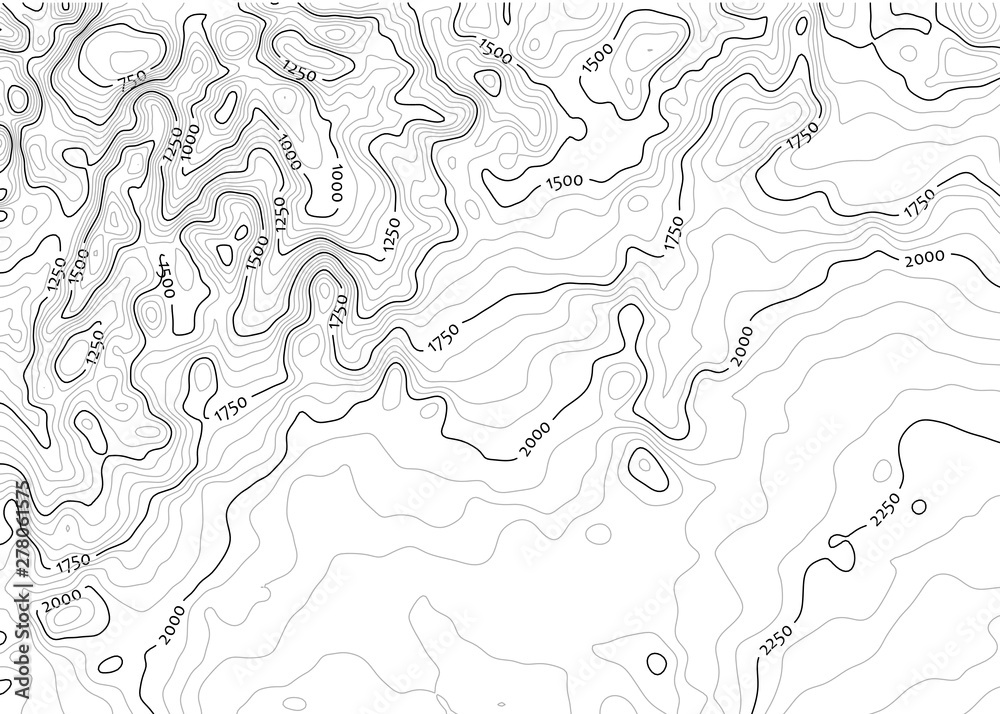 Fototapety, obrazy: Contour topo map in black/white with labels