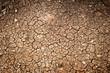Klimawandel und Trockenheit