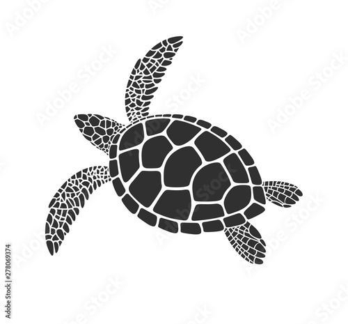 Photo Sea turtle logo. Isolated turtle on white background. Reptile