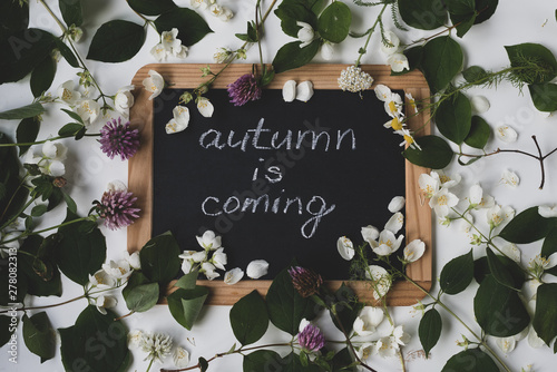 Fotografía  Blackboard in wooden frame with sign autumn is coming with wilting flowers and plants, flatlay