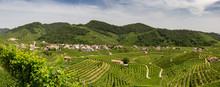 Panorama Of Vineyard County Around Valdobbiadene