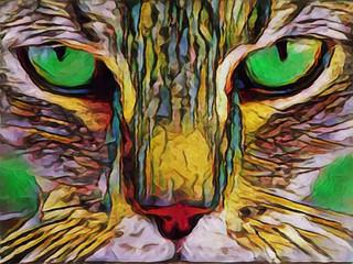 Close up cat - illustrated