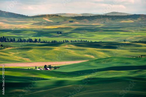Beautiful Farmland Patterns Seen From Steptoe Butte, Washington Fototapet